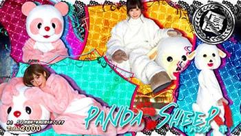 パンダ&羊画像